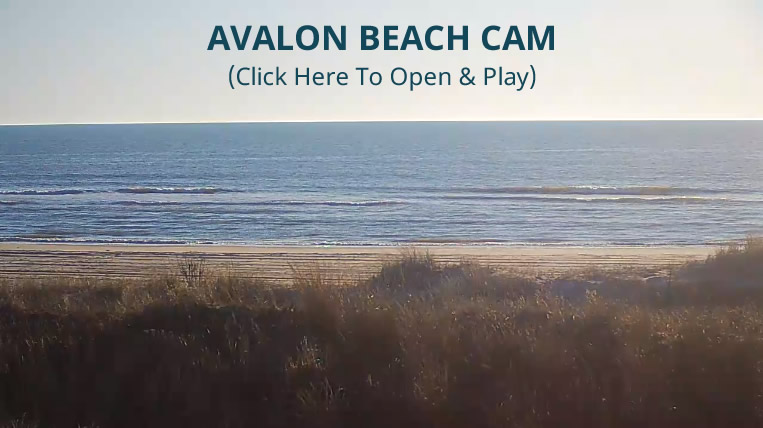 Avalon Beaches